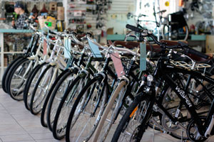 A row of bicycles at the Calgary shop