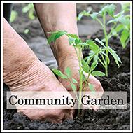 Beltline Community Garden